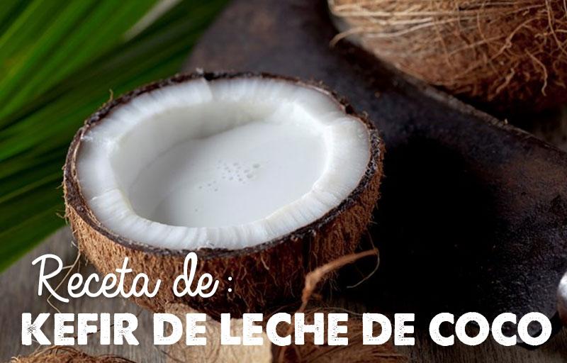 Receta de Kéfir de Leche de Coco