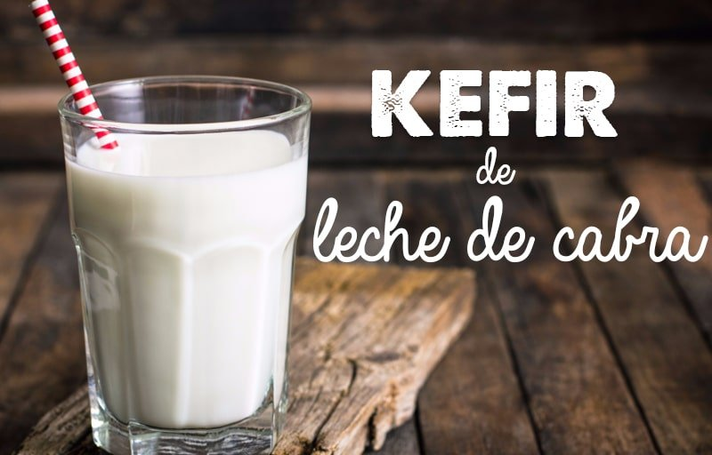 kefir de leche de cabra